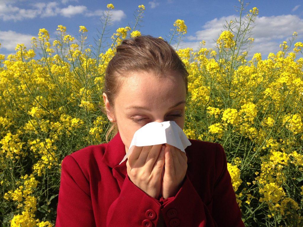 Sprawdzony alergolog stargard nfz